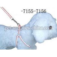 Wholesale dog harness and dog leashes,dog leashes and harnesses(AF7156) from china suppliers
