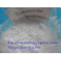 Wholesale Testolent Human Growth Hormone Raw Testosterone Powder Phenylpropionate Steroids from china suppliers