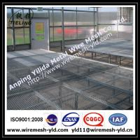 Wholesale why choose expanded metal for greenhouse bench? from china suppliers