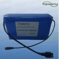 Wholesale Electric Golf Cart Rechargeable Lithium Ion Batteries 12V 20Ah 240Wh With BMS from china suppliers