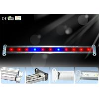 Wholesale Super Bright 11w 11pcs Led Plant Growing Lights For Aquarium Fish from china suppliers