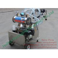 Wholesale Farm Milking Equipment Portable Cow Milker with Petrol / Gasoline Engine from china suppliers