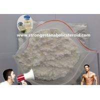 Wholesale Best protein Steroids powder For Muscle Getting Tset D / Testosterone Decanoate / Testosterone Enanthate from china suppliers