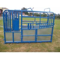 Quality Durable cattle panel , cattle gates , oval rail yard equipment 1.2-2.5mm thickness for sale