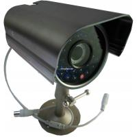 Wholesale Weatherproof Night Vision Surveillance Camera PAL / NTSC , Double glasses from china suppliers