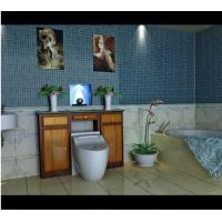 Wholesale Automatic Toilet,Intelligent Washoilet,Electrical Bidet,Bathroom Equipment,Toilet seat from china suppliers