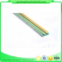 Wholesale 8mm Green Plastic Coated Bamboo Garden Stakes / 8 Foot Bamboo Pole from china suppliers