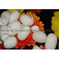 Wholesale The Natural Silkworm Cocoon Facial Cleanser Ball from china suppliers