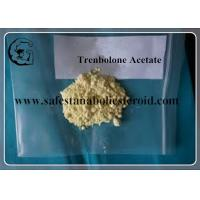 Wholesale Trenbolone Acetate 10161-34-9 Muscle Gain Tren Ace Trenbolone Steroid from china suppliers