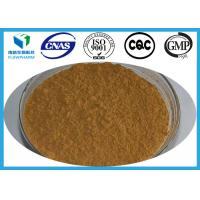 Wholesale Tuckahoe Poria Cocos Extract Raw Material Analysis Pharmaceuticals Treat Cancers from china suppliers