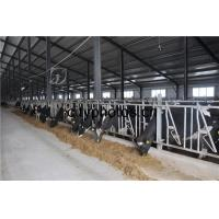 Wholesale Poultry Farm Building Structure from china suppliers