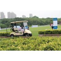 Wholesale 3KW AC KDS Motor Street Legal Electric Golf Carts With 2 Seater Easy Control from china suppliers