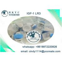 Wholesale Human Growth Hormone Peptides Steroids IGF-1 LR3  For Fat Loss And Bodybuilding from china suppliers