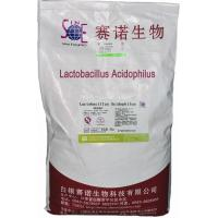 Wholesale Healthly Lactobacillus Acidophilus Probiotic Feed Additives 10BI CFU/G SEM-LA10BI from china suppliers