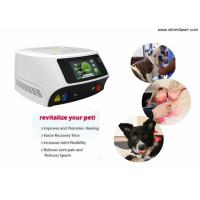Wholesale 30W / 60W Veterinary Laser Equipment For Dogs with 980nm Wavelength from china suppliers