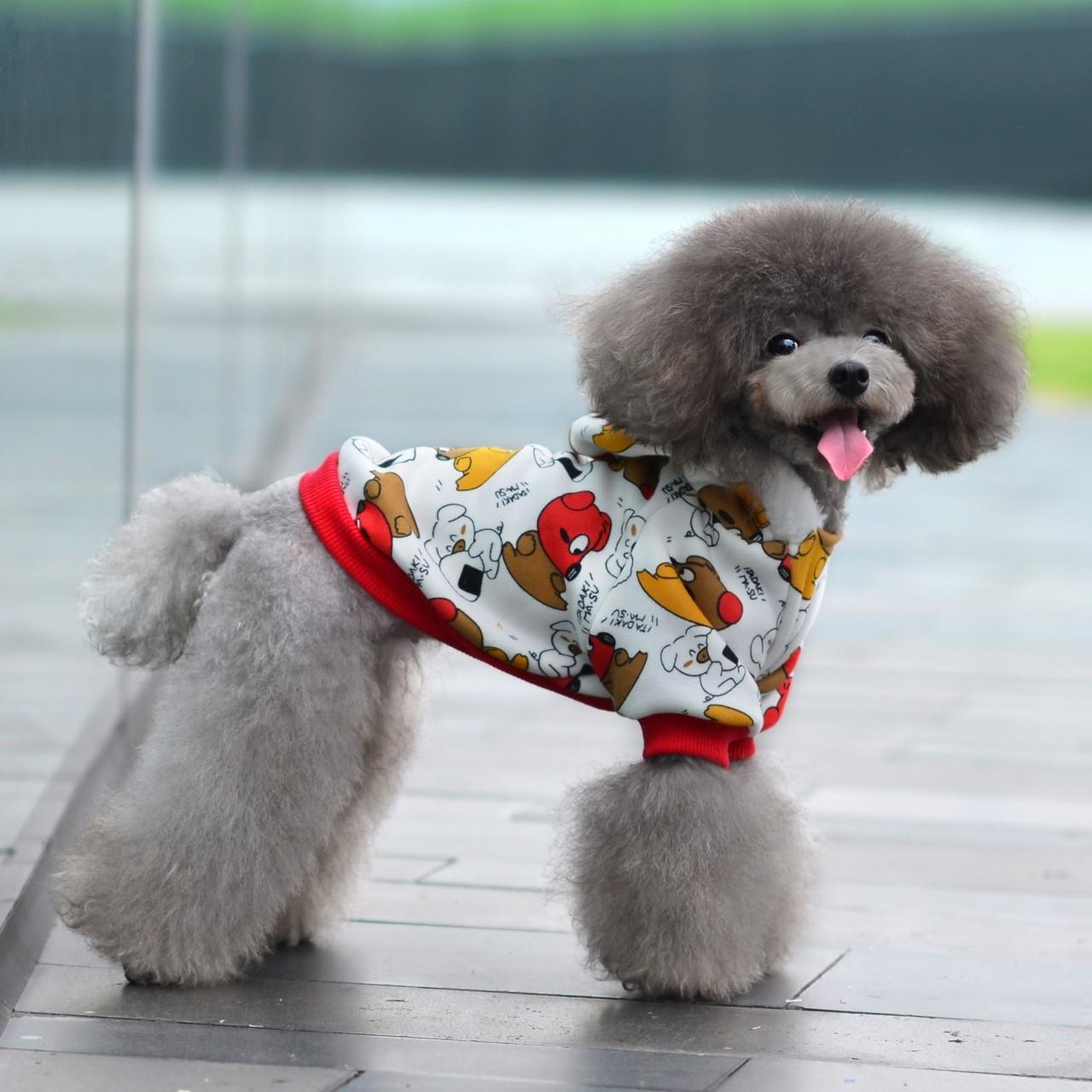 Wholesale Not fall cashmere Camouflage 100% Cotton Personalized Dog Clothes from china suppliers