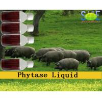 Wholesale Phytase Animal Feed Liquid Enzymes In Animal Nutrition 20000u/mL Szym-PHY20L from china suppliers