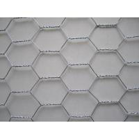 Quality Hot Dipped Galvanized Chicken Wire Mesh for sale