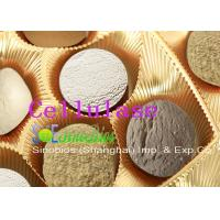 Wholesale Acid Cellulase Additive Animal Feed Enzymes Cellulose Powder Szym-ACE10FE from china suppliers