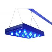 Wholesale New hot cidly 400 watt(80pcs 5w )LED Grow Light full spectrum for indoor Horticultural from china suppliers