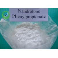 Wholesale Milk White Nandrolone Phenylpropionate Anabolic Powder With 99% Assay , CAS 62-90-8 from china suppliers