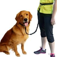 Wholesale Hands Free Dog Leash/Pet Leash,  No Pull Lightweight Jogging Dog Leash with Reflective Stitching Bungee&Adjusta from china suppliers
