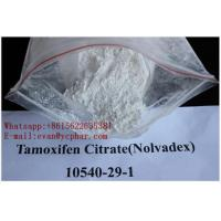 Wholesale Raw Anti Estrogen Steroids Nolvadex Tamoxifen Citrate For Muscle Building from china suppliers