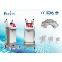 Wholesale Factory Freezing Fat Cryolipolysis Beauty Equip With 2 Large Cryo Lipo Handles from china suppliers