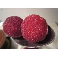 Wholesale New Season Canned Red Bayberry / Canned Waxberry Arbutus in light syrup from china suppliers