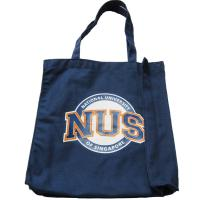 Wholesale Canvas Tote Shopper Bags 10Oz , Large Travel Tote Bags With Pockets from china suppliers