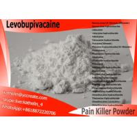 Wholesale Surgical Anaesthesia Powder Local Anesthetic Drugs Levobupivacaine CAS NO 27262-47-1 from china suppliers