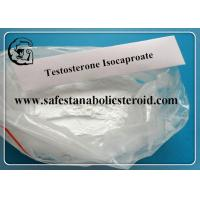 Wholesale 99.9% Testosterone Isocaproate Raw Steroid Powders For Cutting Cycle Testosterone Iso from china suppliers