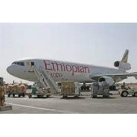 Wholesale China to Niger shipping A1Chinafreight air cargo  to Niamey,Niger from china suppliers