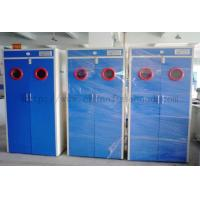 Wholesale Compressed Gas Cabients / Storage Gas Cabints Supplier / Gas Cylinder Cabinet Exporter from china suppliers