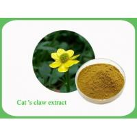 Wholesale Standard herbal extract Cat's Claw Extract from china suppliers