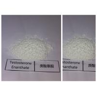 Wholesale Raw Bulking Cycle Steroids Testosterone Enanthate White Powder 315-37-7 from china suppliers