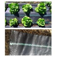 Buy cheap Cheap polypropylene woven fabric weed mat from wholesalers