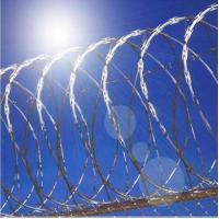Wholesale Electro Galvanized Razor Barbed Wire Fencing For Military Field, Society Fence from china suppliers