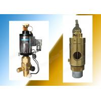 Wholesale Manually Actuated 2Mpa Fm200 Container Valve High Performance from china suppliers