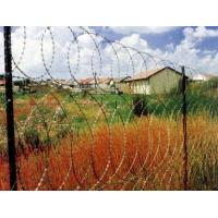 Wholesale BTO-28 BTO-30 Zinc Plated High Tensile Barbed Wire ,  Wire Barrier Fencing from china suppliers