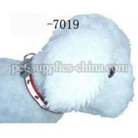 Wholesale electronic dog collars,dog collars for small dogs(AF7019) from china suppliers