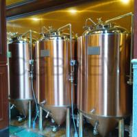 Wholesale 200L brewpub equipment for sale for small business on craft beer from china suppliers