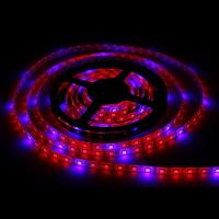 Wholesale SMD5050 Hydroponic Systems Led Plant grow light Waterproof Led Grow Strip Light from china suppliers