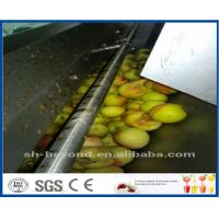 Wholesale CE Apple Processing Line with Automatic Disinfection Liquid Concentration Control System from china suppliers