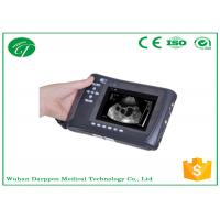Wholesale Vet Ultrasound / Mini Veterinary Ultrasound Diagnostic Machine For Swine / Dog from china suppliers