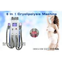 Wholesale Multifunction Cryolipolysis Slimming Machine With Cavitation / Radio Frequency / Lipo Laser from china suppliers