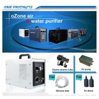 Wholesale 110V / 220V Household Ozone Generator For Vegetables And Fruits Washing from china suppliers