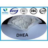 Wholesale DHEA Anti - aging Steroids , Dehydroepiandrosterone Raw Hormone Powder from china suppliers