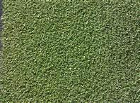 Wholesale Monofilament Nylon eco friendly Artificial Grass evergreen for garden from china suppliers