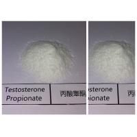 Wholesale Cutting Cycle Steroids Testosterone Phenylpropionate For Muscle Enhancement from china suppliers